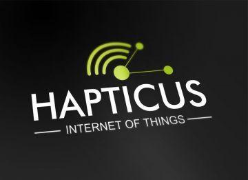 2017-hapticus