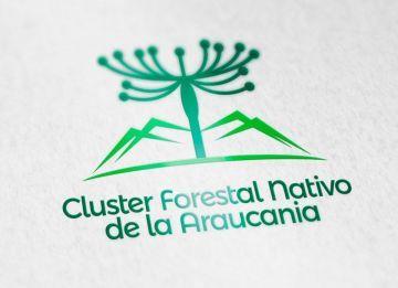 cluster-forestal