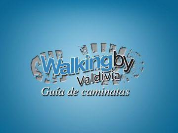 walkingby